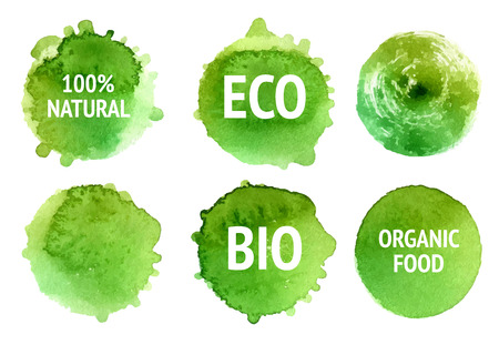 Vector natural, organic food, bio, eco labels and shapes on white background. Hand drawn stains set.