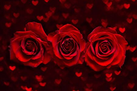 Photo pour Valentines day card with three Red Roses on dark heart boke Background. Love and Wedding Day concept - image libre de droit