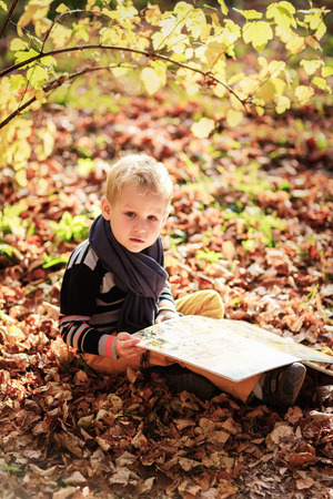 autumn baby boy consider reading a book under a tree with yellow leaves
