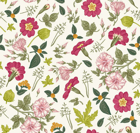 Illustration pour Seamless pattern. Beautiful fabric blooming realistic isolated flowers. Vintage background primrose petunia wildflowers. Wallpaper baroque. Drawing engraving sketch. Vector victorian Illustration. - image libre de droit