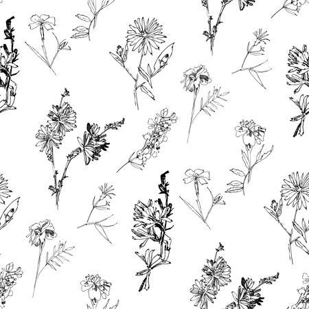 Illustration pour Seamless pattern with Wild Flowers with Summer Botanical Sketches - image libre de droit