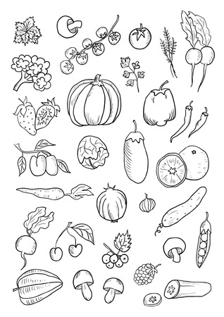 Fruit and Vegetables hand drawn set