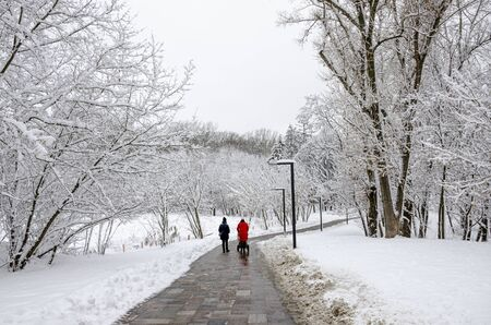 Photo pour Two young women walk with a pram and a child in a winter snow park. winter - image libre de droit