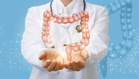 Doctor supports the colon of a person . Concept digestive system.