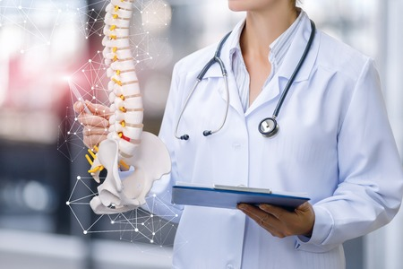 Photo for A medical worker shows the spine on blurred background. - Royalty Free Image