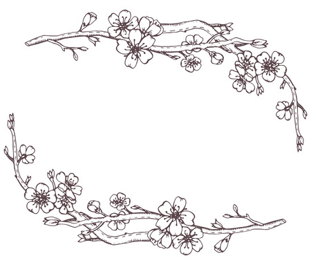 Illustration pour Vector frame with hand drawn graphic branches of a blossoming cherry tree (sakura) - image libre de droit