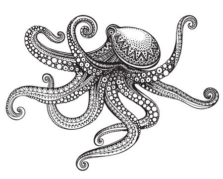 Illustration pour Hand drawn octopus in graphic ornate style. Vector illustration for tattoo, coloring book, print on t-shirt, bag. Black and white colors - image libre de droit