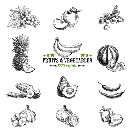 Vector set of fruit and vegetables. Healthy food. Vector illustration in sketch style. Hand drawn design elements.のイラスト素材