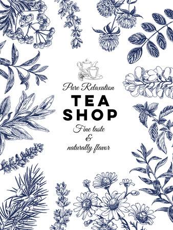 Illustration for Beautiful vector hand drawn tea herbs Illustration. Detailed retro style images. Vintage sketches for labels. Elements collection for design. - Royalty Free Image
