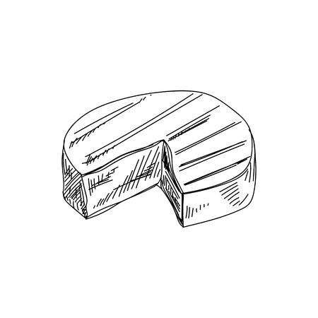 Illustration pour Beautiful vector hand drawn Cheese Illustration. Detailed retro style image. - image libre de droit