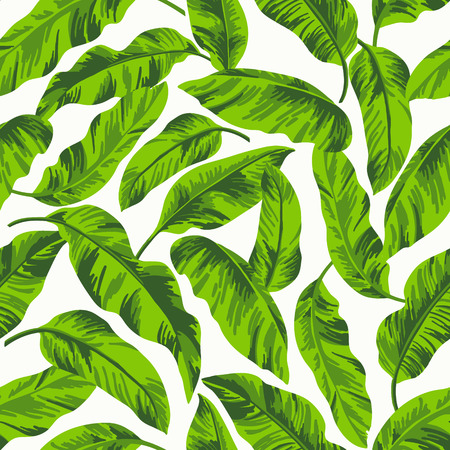 Seamless exotic pattern with tropical leaves on a white background