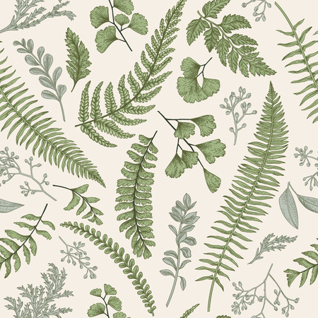 Illustration for Seamless floral pattern in vintage style. Leaves and herbs. Botanical illustration. Boxwood, seeded eucalyptus, fern, maidenhair. - Royalty Free Image