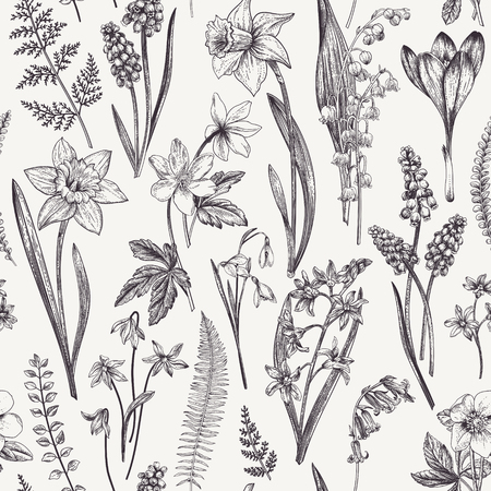 Illustration pour Vintage seamless floral pattern. Spring flowers and  herbs. Botanical vector illustration. Narcissus, lily of the valley, hellebore, snowdrop, crocus. Engraving. Black and white. - image libre de droit