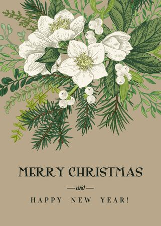 Illustration pour Vintage Greeting Card. Winter and Christmas background with a bouquet of evergreens, conifers and hellebore flowers. Vector botanical illustration. Kraft. - image libre de droit