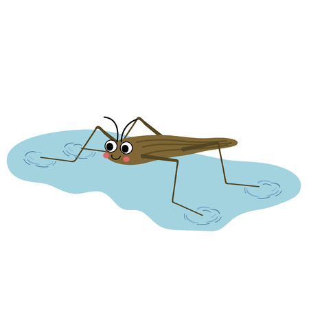 Pond Skater walking on water animal cartoon character. Isolated on white background. illustration.