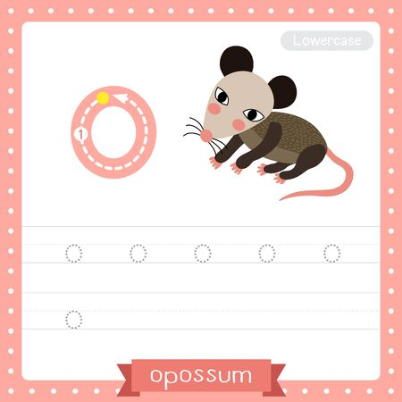 Illustration pour Letter O lowercase cute children colorful zoo and animals ABC alphabet tracing practice worksheet of Opossum for kids learning English vocabulary and handwriting vector illustration. - image libre de droit