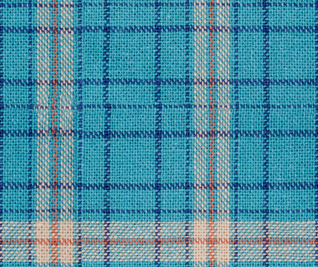 Seamless  blue white and red checkered fabric texture