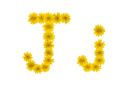 Letter J, alphabet made from yellow Wedelia flowers isolated on white background