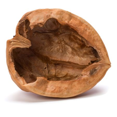 empty walnut shell isolated on white background
