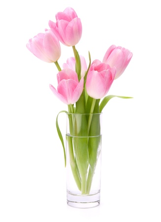 Pink tulips bouquet in vase isolated on white background
