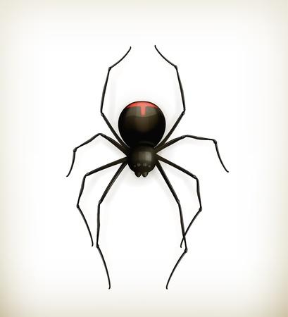 Spider, icon