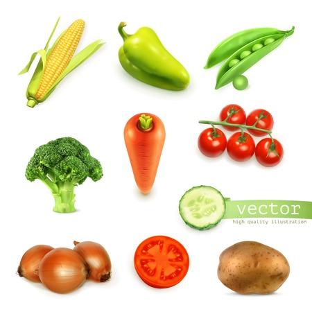 Illustration pour Set of vegetables, vector illustration - image libre de droit