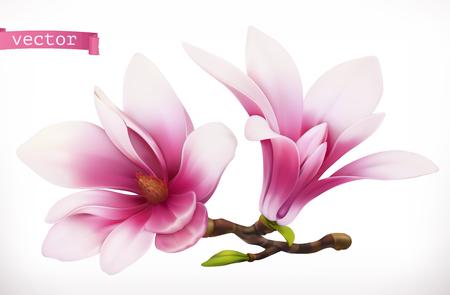 Illustration pour Magnolia. 3d realistic vector icon - image libre de droit