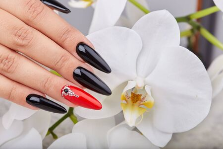Foto de Hand with long artificial manicured nails colored with black and red nail polish and white orchid flower - Imagen libre de derechos