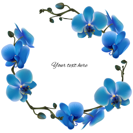 Ilustración de Blue orchids. Tropical flowers. Exotic plants. Floral background. Card. Frame. Border. Template. - Imagen libre de derechos