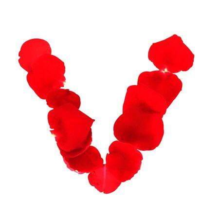 Letter V sof rose petals
