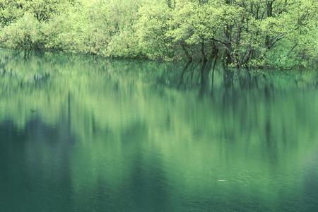 Naturephotograph170400202