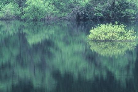 Naturephotograph170400246