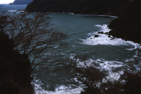Naturephotograph170400915