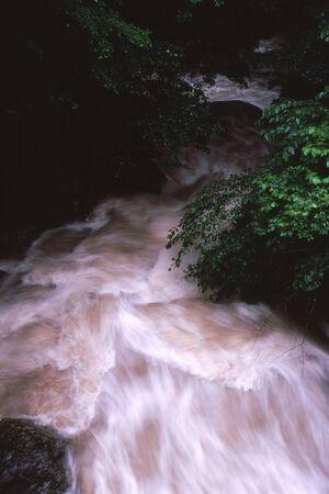 Naturephotograph170401018