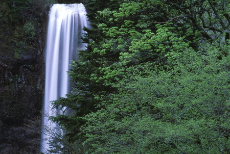 Naturephotograph170401043