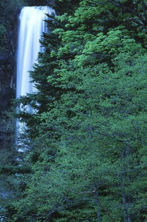Naturephotograph170401071