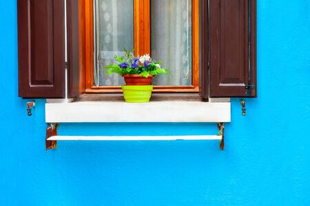 Photo for Window with flowers on the blue wall. Colorful architecture in Burano island, Venice, Italy. - Royalty Free Image