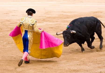 BARCELONA - JUNE 6: Julian Lopez, El Juli, in action during a bullfight, typical Spanish tradition where a bullfighter kills a bull, on June 6, 2010 in Barcelona, Spain