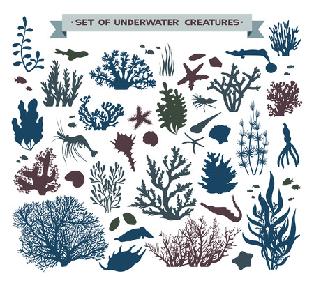 Illustration pour set of underwater sea creatures - coral reef, fish, seashells and starfish. - image libre de droit
