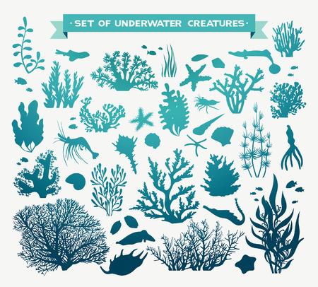 Illustration pour set of sea animals - coral, fish, shrimp, seashells and starfish. Underwater ocean creatures on a white background. - image libre de droit