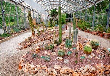 PISA, ITALY - MAY 30, 2018: Cucculent plants greenhouse at Orto botanico di Pisa (Orto Botanico dell Universita di Pisa), the oldest university botanic garden in the world
