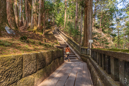 Stone steps to the tomb of Tokugawa Ieyasu in Tosho-gu shrine