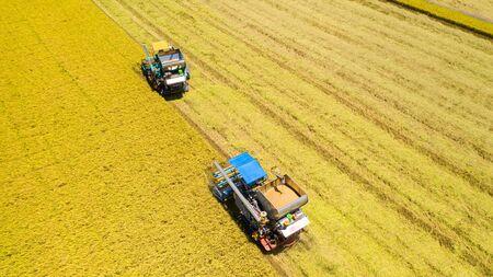 Foto für Aerial view of Harvester machine working in rice field from above - Lizenzfreies Bild