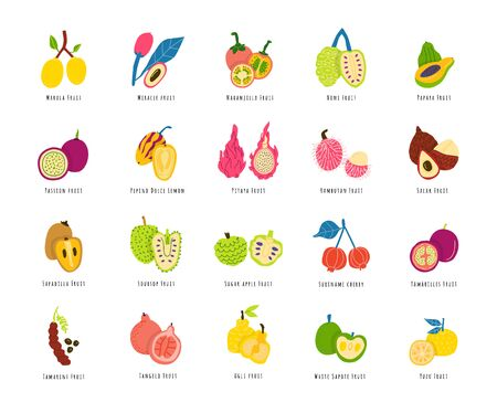Illustration pour Fruits, berries cartoon illustrations set. Sliced tropical delicacy drawings pack. Exotic juicy food hand drawn cliparts. Chopped healthy summer meal. Fruit salad ingredients with names - image libre de droit