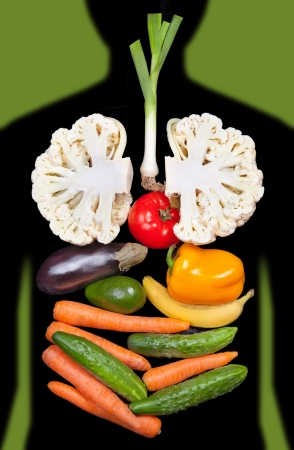 human organs lined with vegetables