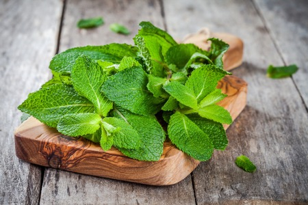 organic fresh bunch of mint on wooden cutting board  on a rustic background