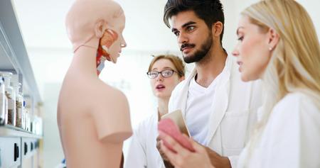 Photo pour Students of medicine examining anatomical model in classroom - image libre de droit