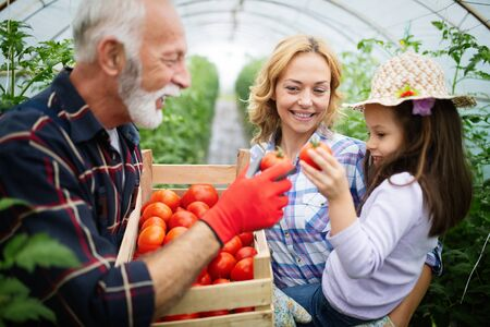 Foto für Grandfather growing organic vegetables with grandchildren and family at farm - Lizenzfreies Bild