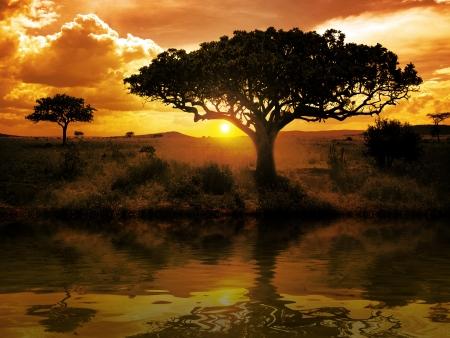 Photo pour Africa Sunset - image libre de droit