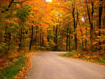 A country road in the fall